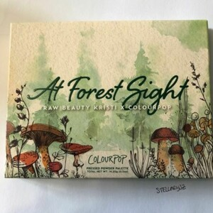 Palette At Forest Sight Colouropop x Raw Beauty Kristi