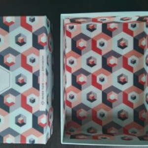 Boîte birchbox x papier tigre